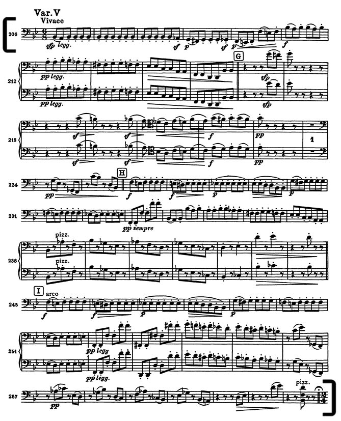Brahms variations on a theme by haydn cello excerpt